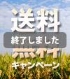 期間限定【送料無料】キャンペーンスタート!月末週末は全国送料無料!!